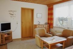 ferienhaus_ruegen_wohnzimmer_garten