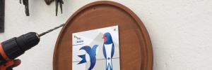 Unterkunft auf Rügen: Schwalben sind willkommen